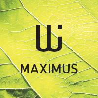 fotografování architektury - logo maximus